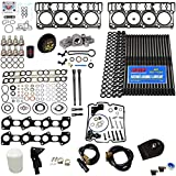 DK 6.0L Revive Kit w/ARP Studs Head Gaskets Oil Cooler Stand Pipes HP Oil Rail Cups Gaskets Coolant Filtration Blue Kit - Compatible with Ford 6.0L Powerstroke - 2005.5-2007 (20MM)
