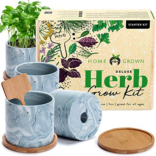 Indoor Herb Garden Starter Kit - He…