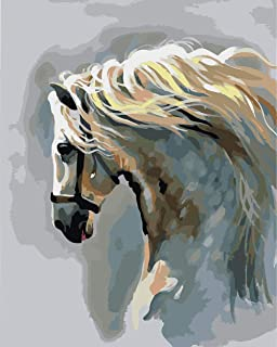 Wowdecor Paint by Numbers Kits for Adults Kids, DIY Number Painting - White Horse Animal 40 x 50 cm - New Stamped Canvas N...