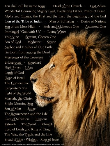 Lion of Judah Wall Chart - Laminated