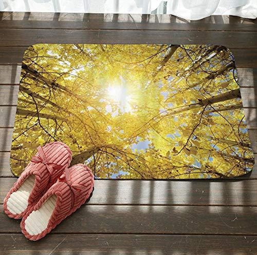 GjbCDWGLA geel blad bos zonlicht antislip badkamer tapijt zachte textuur vloer mat wasbaar bad matten water absorberende tapijten deurmat 50 cm x 80 cm
