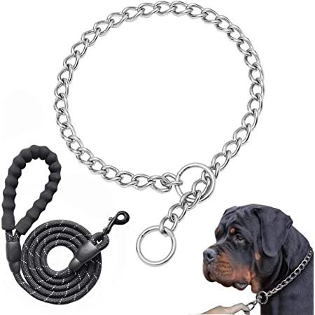 Balacoo 16 Zoll Slip Collar Edelstahl Choke Kragen Stark Haltbar Wasserdicht Tr/übungsbest/ändig No Pull Dog Trainingshalsband Choke Kette