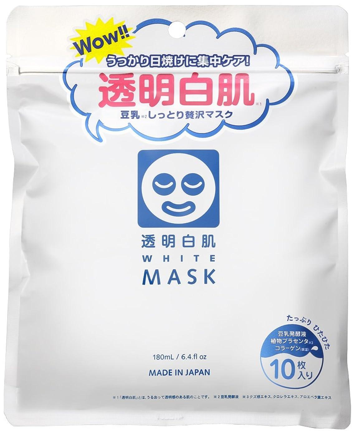 同行アマチュアストレージ透明白肌 ホワイトマスクN 10枚入