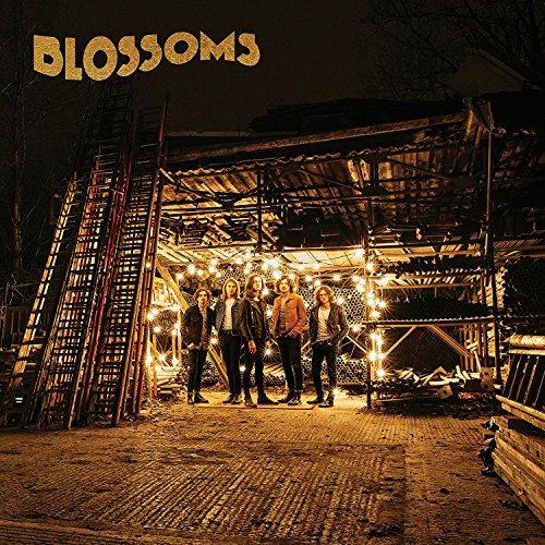 Blossoms (Vinyl) [Vinyl LP]