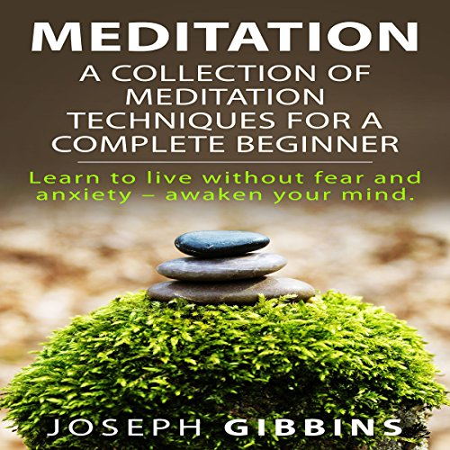 Meditation: A Collection of Meditation Techniques for a Complete Beginner audiobook cover art