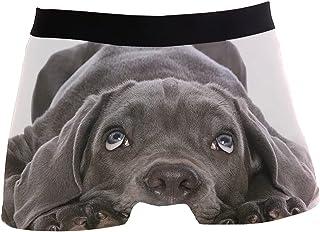 hengpai Eared Black Dog Prints Men's Boxer Briefs Soft Underwear Covered Waistband Short Leg