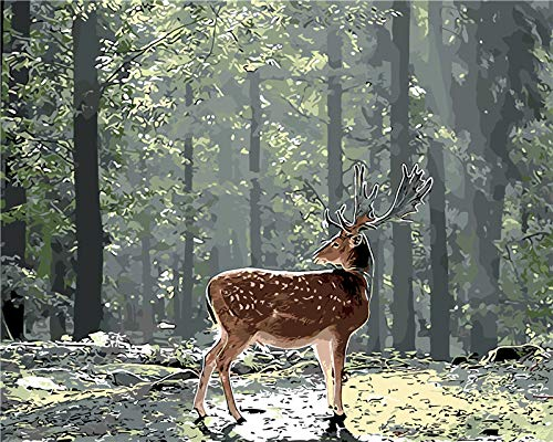 DIY Paint Adult Digital kit DIY Longhorn Deer Oil Painting Digital Drawing for Children Beginners 16X20 inch Christmas Home Decoration ==