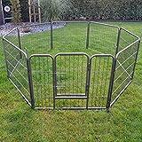 zooprinz erstklassiges Freilaufgehege (Hundezaun) Dog Run - ideal für Welpen und große Hunde -Besonders stabiles Gitter - perfekt für drinnen und draußen - 4 Modelle zur Wahl, 100 cm
