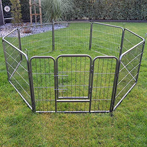 zooprinz erstklassiges Freilaufgehege (Hundezaun) Dog Run - ideal für Welpen und...