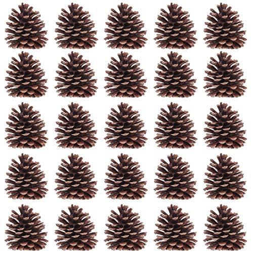 Toyvian 50pcs Piñas Natural 6-8 cm Cono de Pino de Navidad Adornos Decoraciones para la Jardín y hogar