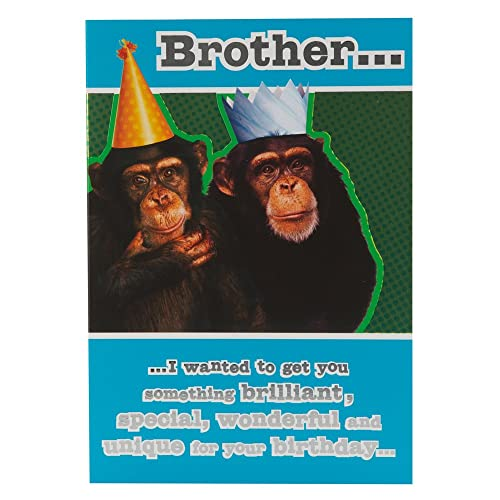 Funny Brother Birthday Card Amazon Co Uk