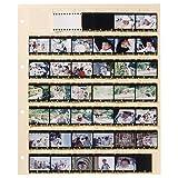 HAKUBA クリアネガフォトアルバム スペアシート 35mm用 511024
