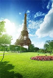 AOFOTO 4x6ft Eiffel Tower in Paris Background Sunny Spring Day France Grassland Photography Backdrop Kid Adult Artistic Portrait Photo Studio Props Video Drape Wallpaper