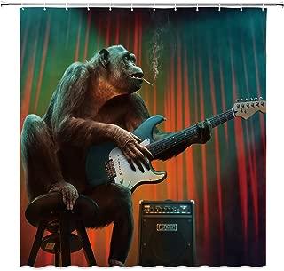 Best animal playing guitar Reviews
