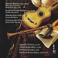 Haydn Rode Giuliani Carulli