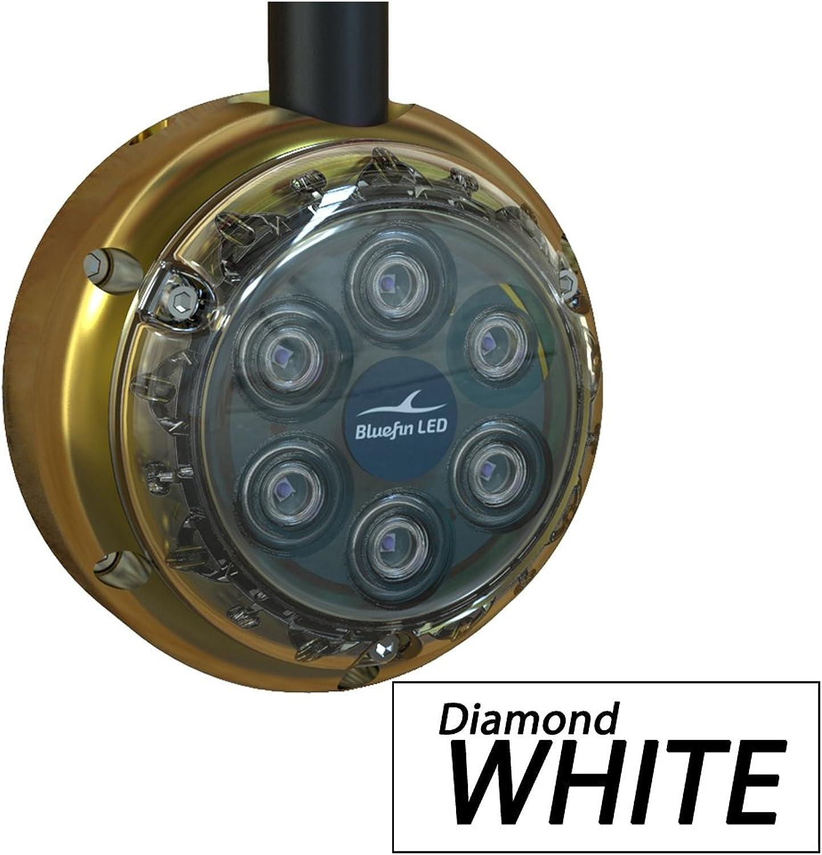 DL6SMW108 blueefin Piranha DL6 White Dock Light noiava3056-Sporting