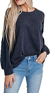 Womens Casual Plain Crew Neck Long Sleeve Knit Sweater Pullover Tops 1 X-Small