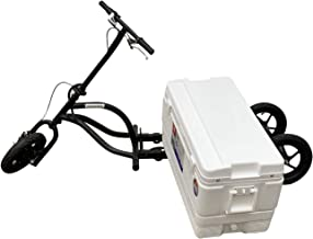 KREWESER Tricycle Electric Hub Motor w/Cooler & Removable Battery