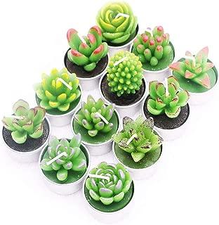 TSAOYA 12 PCS Cactus suculentas Velas candelitas Velas delicadas hechas a mano de Cactus para fiesta de cumpleaños Boda Spa Decoración del hogar Regalos (velas de cactus estilo 4)