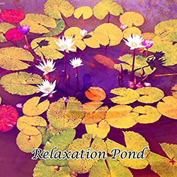 Relaxation Pond