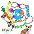 Pawsfun Dog Toy Ball Upgrade Bouncing Squeaky Interactive Giggle Toys