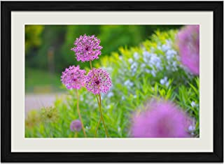 Flowers Macro Plants - Art Print Wall Black Wood Grain Framed Picture(20x14inches)