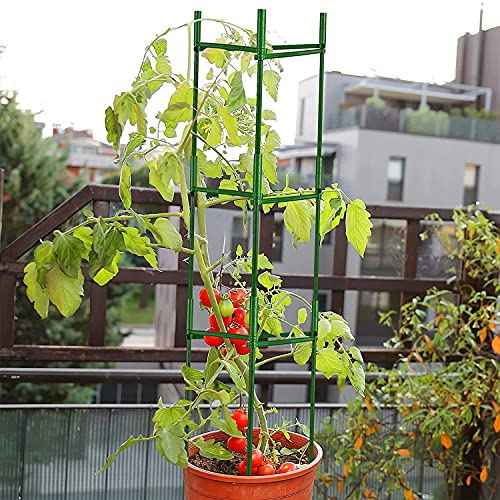 Flexsto Tomato Cage, 3 Pack 48 inches Garden Plant Support Stakes , Plant Support Deformable Assembled Tomato Stakes for Climbing Plants, Tomato, Cucumber