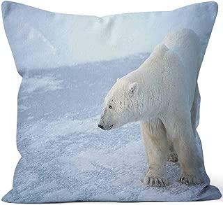 Best hudson bay cushions Reviews