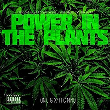 Power In the Plants