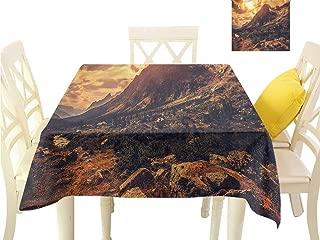 WilliamsDecor Outdoor Picnics Europe,Italian Alps Scenery Dining Table Cover W 50