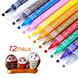 Acrylic Paint Pens, Acrylic Paint Markers for Rock Painting, Metal, Ceramic, Plastic, Glass