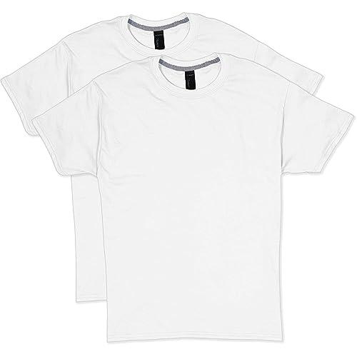 a4b8ea05 Hanes Men's 2 Pack X-Temp Performance T-Shirt