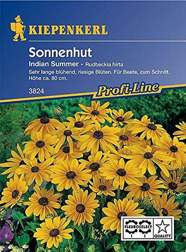 Kiepenkerl, gelber Sonnenhut, Rudbeckia hirta Indian Summer