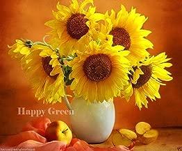 BIG SMILE DWARF - 35 seeds - POT SUNFLOWER - Helianthus annuus yellow - gold