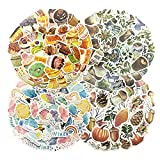 Cotrida 188pcs Plant Stickers, Aesthetic Coffee Sticker, Cake Paper Sticker, Weather Stationary for Scrapbooking Embellishments, Journaling Supplies, Planners, Kid DIY Crafts, Bullet Journal