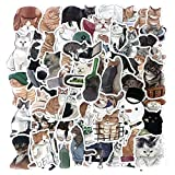 Cute Cat Pet Stickers Pack(54pcs), No Repeat Kawaii Cats Vinyl Kids Sticker for Water Bottle Skateboard Motorcycle Bike Laptop Guitar Weapon Box ATV with Waterproof PVC