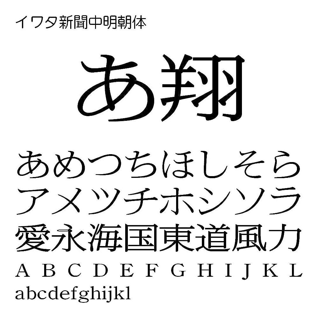便益理解するセッティングイワタ新聞中明朝体Pro OpenType Font for Windows [ダウンロード]