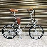 BLTR Conveniente Bicicleta de Bicicleta de Bicicleta de 20 Pulgadas Bicicleta de Bicicleta Retro Marco de Bicicleta Mini Bicicleta con Leve (Color : Clear, Size : 1 Speed)