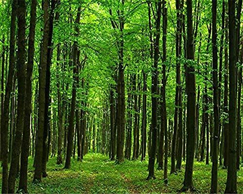 XHXI Mural de papel tapiz de foto de naturaleza moderno bosque paisaje mural de fondo de TV pared papel tapiz Pared Pintado Papel tapiz Decoración dormitorio Fotomural sala sofá mural-400cm×280cm