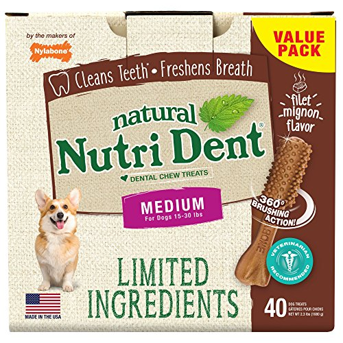 Nylabone Nutri Dent Natural Dental Filet Mignon Flavored Chew Treats 40 Count Medium - Up to 30 lbs