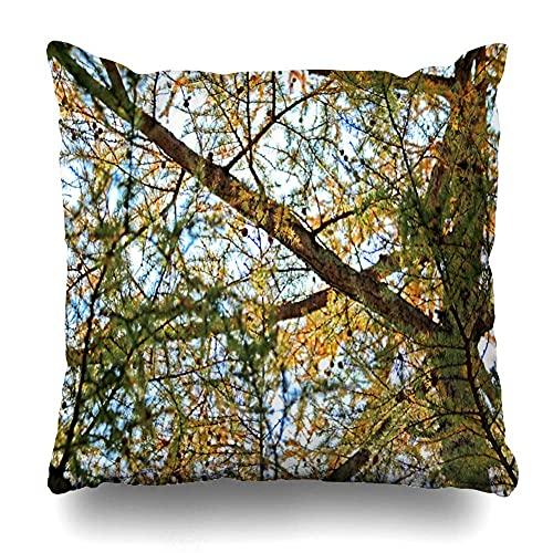 Fundas de almohada decorativas, fundas de almohada, hojas de temporada otoñal en Nikko International Park Japón, patrón de doble cara, decoración para el hogar