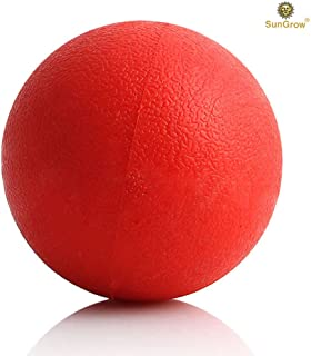 SunGrow Ultra Bouncy Ball for Dogs, Daily Exercise Herding Ball for Pitbull & Doberman, for Teething Stage, Strong Rubber Ball, Bright Red Color, Entertainment for Hours