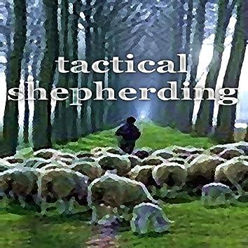 Tactical Shepherding
