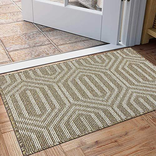Fußmatte für den Innenbereich, rutschfester, saugfähiger Teppich mit Schmutzaufnahme, 80 x 50 cm, maschinenwaschbar, flache Innentürmatte (braun)