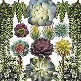 Caqpo Artificial Succulents - 15...