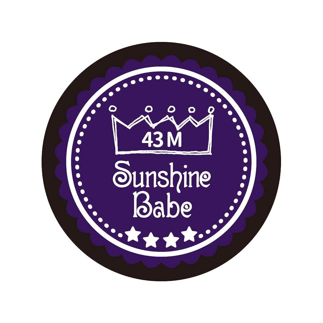急行する六リングSunshine Babe カラージェル 43M オータムウルトラバイオレット 2.7g UV/LED対応