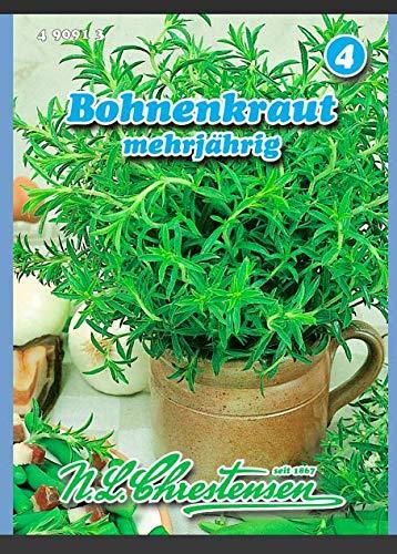 Bohnenkraut mehrjährig N.L.Chrestensen Samen 490913-B