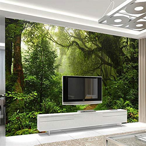 Murale Mur De La Forêt Primitive Personnalisé 3D Mur Photo De Paysage Papier Peint Pour Les Murs Papier Peint De Paysage 3D Pour La Décoration De La Maison De Salon, 308X220Cm