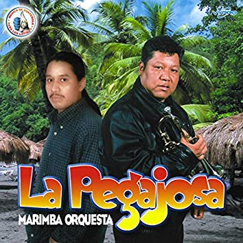 La Pegajosa. Música de Guatemala para los Latinos
