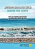 Meeresrauschen - Küsten des Lichts: Texte aus mehreren Jahrtausenden zum Thema Meer, Küsten und Licht, mit Aquarellen von Wassilis Dornakis - Jan Hübel